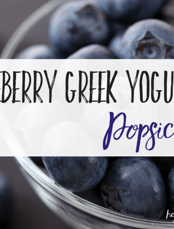 Blueberry Greek Yogurt Popsicle feat
