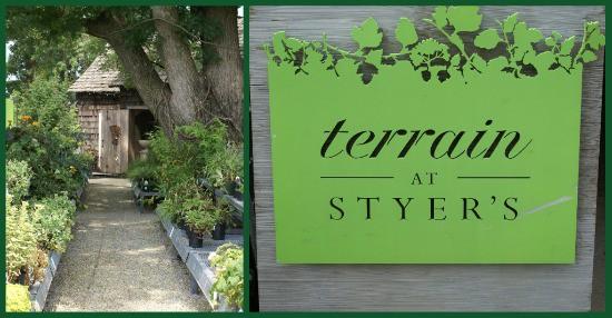 Terrain at Styer's Sign