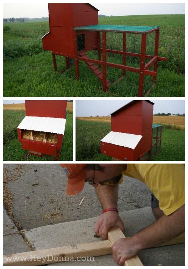 Chicken Coop Collage