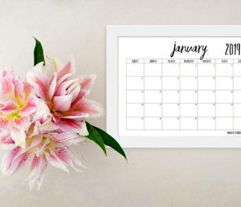 2019 Monthly Calendar Printable