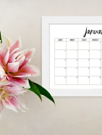 2019 Monthly Calendar Printable