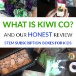 kiwico doodle crate